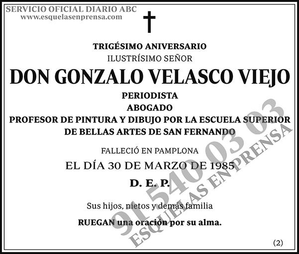 Gonzalo Velasco Viejo